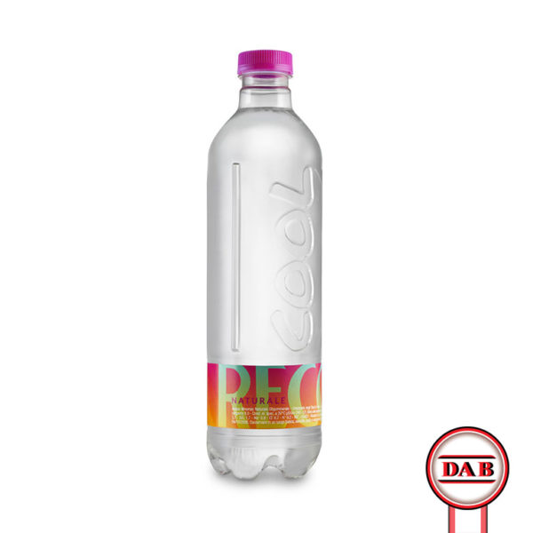 recoaro cool __ acqua naturale __ ml 500 __ DAB Distribuzione Alimentari Bevande__